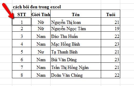 cach-boi-den-trong-excel-4