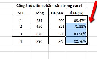 cong-thu-tinh-phan-tram-trong-excel-6