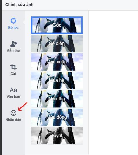 chen-bieu-tuong-vao-anh-facebook-3