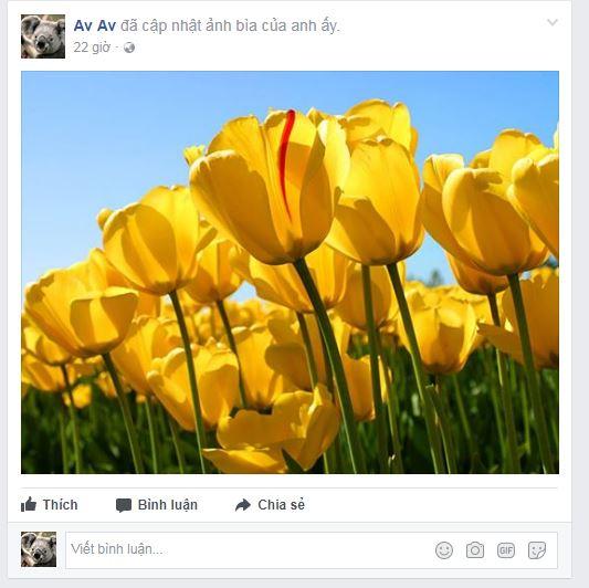 khoi-phuc-bai-dang-da-an-tren-facebook-4