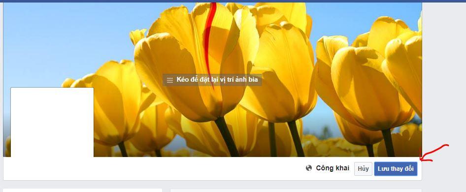 doi-anh-bia-facebook-tren-may-tinh-2
