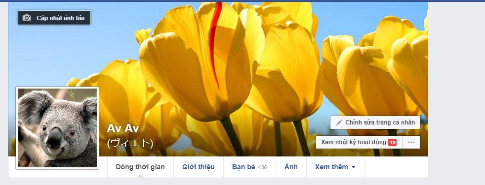 doi-anh-bia-facebook-tren-may-tinh-3