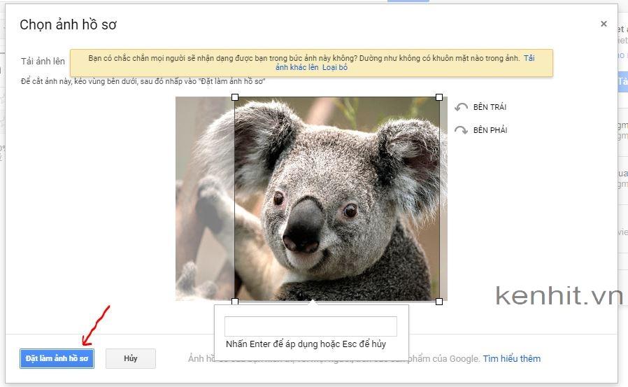 Hướng dẫn cách thay đổi ảnh đại diện gmail