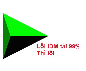 Lỗi tải IDM 99% thì bị lỗi không tải được nữa