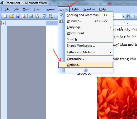 Hướng dẫn cách sửa lỗi cách chữ trong word 2003